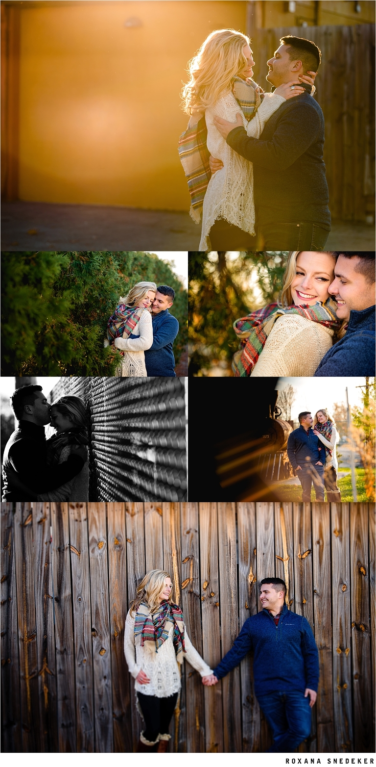 Indianapolis Indiana Engagement pictures