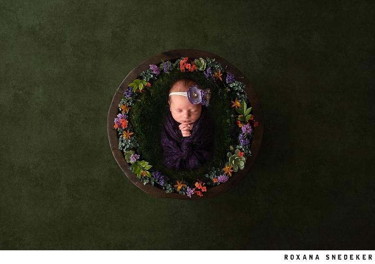 Westfield, Fishers, Carmel, Zionsville, Anderson Indiana Newborn Photographer