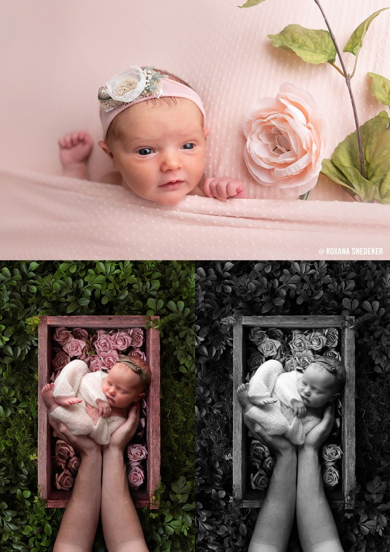 Indianapolis family & newborn photographer located in Noblesville, Indiana